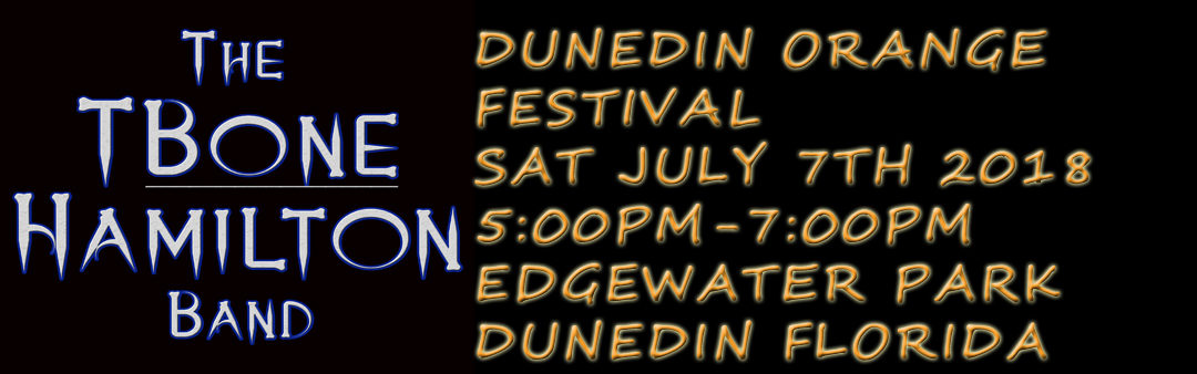 TBone Hamilton Band perform at the Dunedin Orange Festival 2018